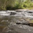 Timelapse, Beautiful little waterfall in rain forest, Thailand. — Stock Video #42174067