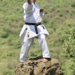 Royalty-Free Stock Photo: Teacher shitoryu karate-do