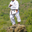 Teacher shitoryu karate-do - Stok fotoğraf