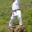 Teacher shitoryu karate-do - Lizenzfreies Foto