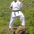 Teacher shitoryu karate-do — Stock Photo