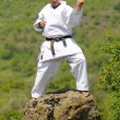 Teacher shitoryu karate-do - Stock Photo