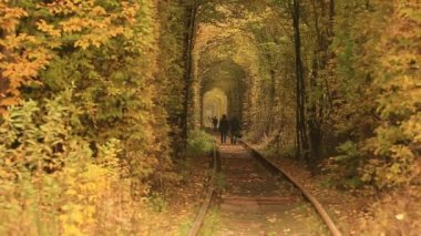Romantic couple walking through Railway tunnel covered with autumn leaves