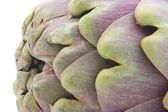 Artichoke close-up — Stock Photo