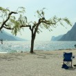 Chairs, trees, and surfers — Stock Photo