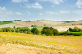 Val d'Orcia landscape — Stock Photo