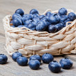 Basket full of fresh blueberries — Stock Photo