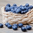 Basket full of fresh blueberries - Foto de Stock