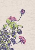 Stylized rose flower — Stock Vector