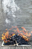 Burning book — Stock Photo