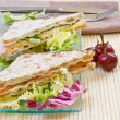 Vegetables sandwich — Stock Photo