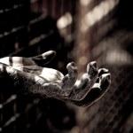aap hand — Stockfoto