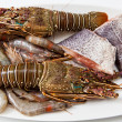 Seafood — Stock Photo #18225061