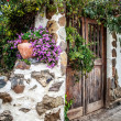 Garden door - Stock Photo