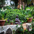 Buda garden - Stock Photo
