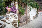 Garden door — Stock Photo