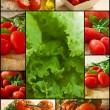 Tomato and vegetables - Stock Photo