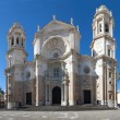 Stock Photo: Cadiz Cathedral