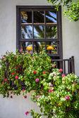 Brown window — Stock Photo