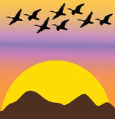 Migratory birds on sunset or dawn — Stock Vector