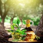 Olive oil — Stock Photo #12692465