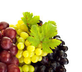 Different kind of grapes — Stock Photo