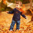 Little boy in autumn park - Stock Photo