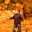 Adorable child in autumn woods — Stock Photo #13684746