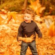 Small boy enjoying autumn nature - Stock Photo