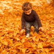 Cute child in fall forest — Stock Photo