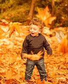 Small boy enjoying autumn nature — Stock Photo