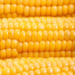Stock Photo: Sweetcorn background