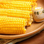 Corncob on the plate — Stock Photo