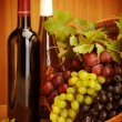 Grape wine still life — Stock Photo