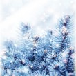 Snowy fir tree background — Stock Photo #16807631