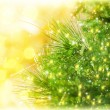 Christmas tree border - Stock Photo