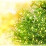 Boże Narodzenie drzewo granica — Zdjęcie stockowe