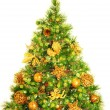 Christmas tree — Stock Photo #17228123