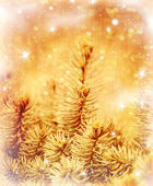 Golden Christmas tree — Stock Photo