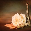 Rose and paper scroll — Stock Photo #19670985