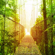 Arenal Hanging Bridges park of Costa Rica — Stock Photo