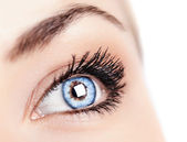 Female blue eye — Stock Photo
