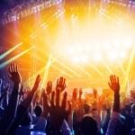 People  having fun at rock concert — Stock Photo #21225945