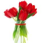 Fresh red tulips — Stock Photo