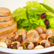 Stock Photo: Escargot with green salad