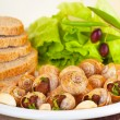 Escargot with green salad — Stock Photo