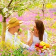 Woman and man on picnic - Stock Photo