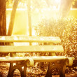 Wooden bench in the park — Stock Photo