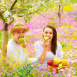 Beautiful couple having picnic - Stock Photo