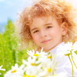 Stock Photo: Little boy on daisy meadow